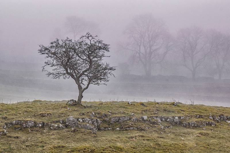 Misty morning at Malham Cove