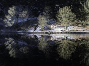 Reflecting at Entwisle
