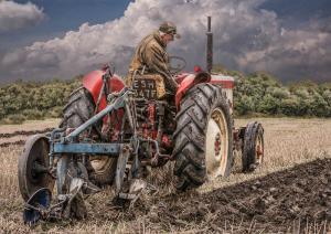 We plough the fields