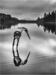 The Wader at Entwistle