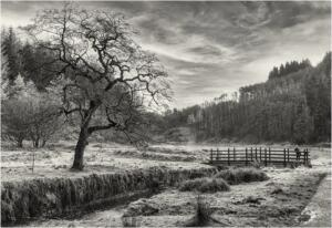 Early morning frost at Entwistle